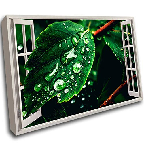 G142 Rain Drops Leaves Nature Plant Framed Wall Picture 3D Art Canvas Mount Room