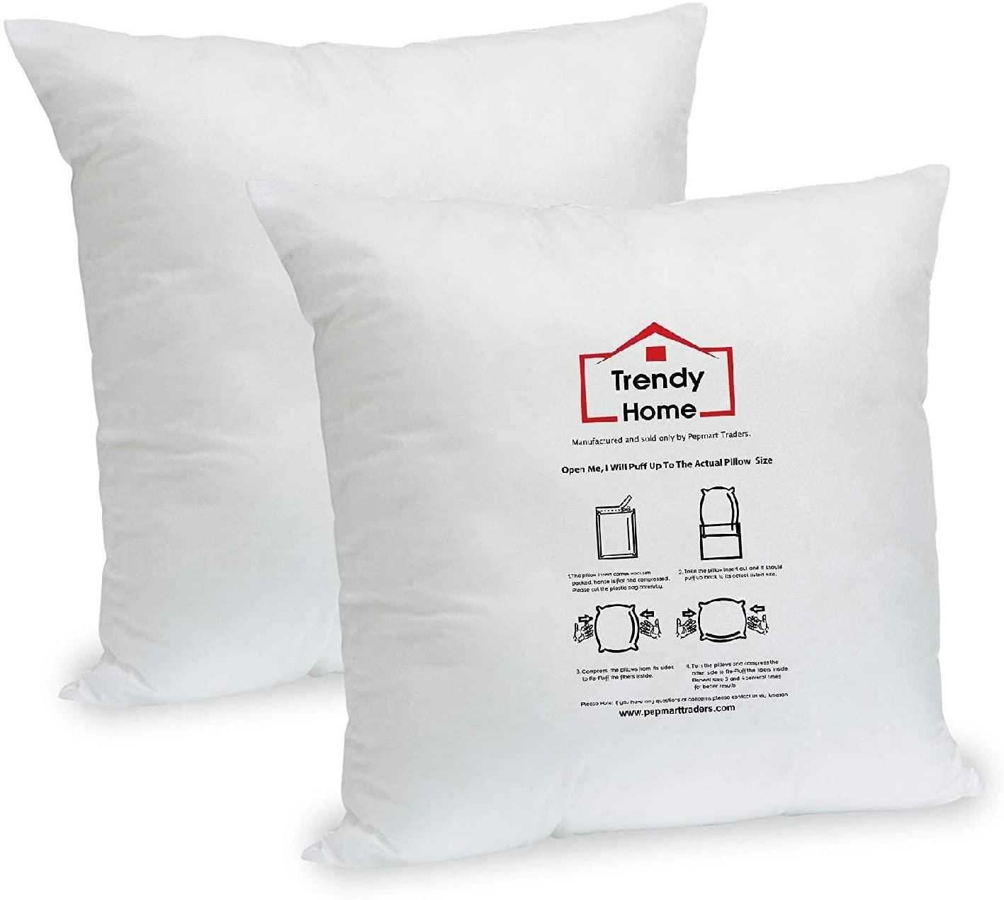 Trendy Home 20x20 Premium Hypoallergenic Stuffer Home Office Decorative Throw Pillow Insert, Standard/White 20x20(2pack)