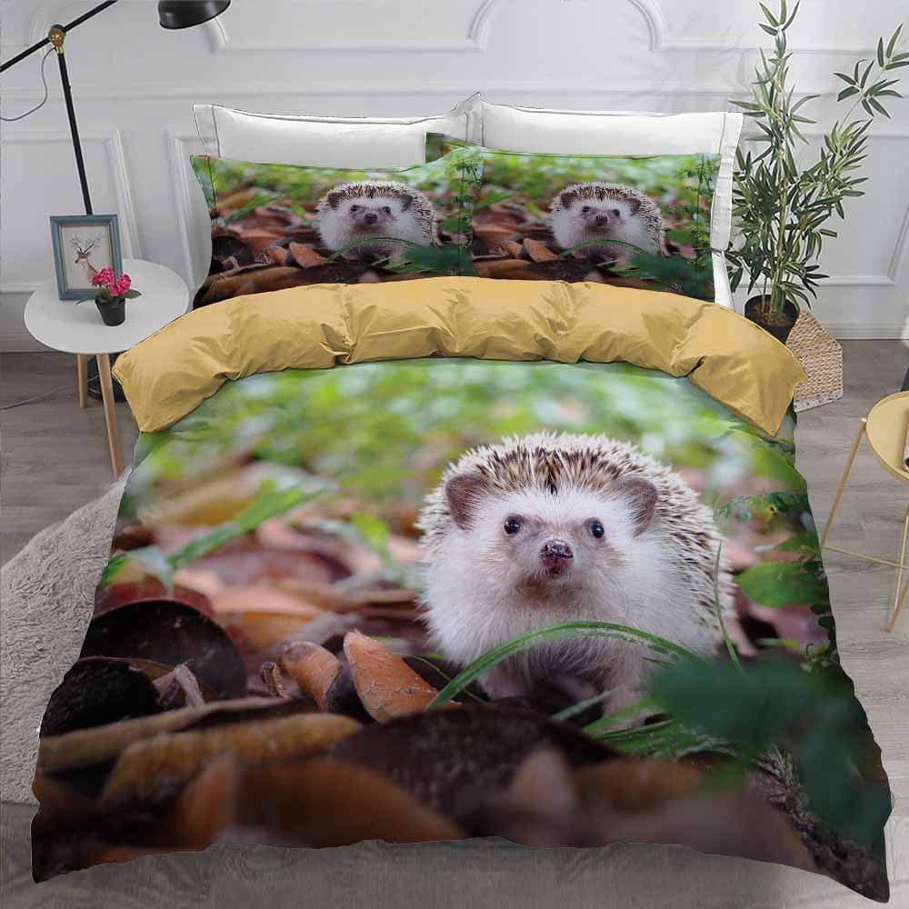 Hedgehog Anime 3D Bedding Set Duvet Covers Set Microfiber Kids Comforter Cover Bedding Sets with Pillowcase Bed Set (229x259cm,#04)