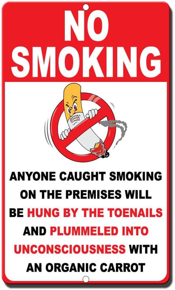 No Smoking Novelty Funny Sign Vinyl Sticker Decal 8
