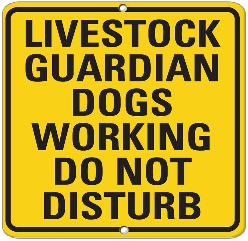 Livestock Guardian Dogs Working Do Not Disturb Activity Vinyl Sticker Decal 8