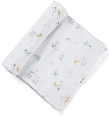 Baby Blanket, Soft Swaddle, Pehr Springtime Friends, 46