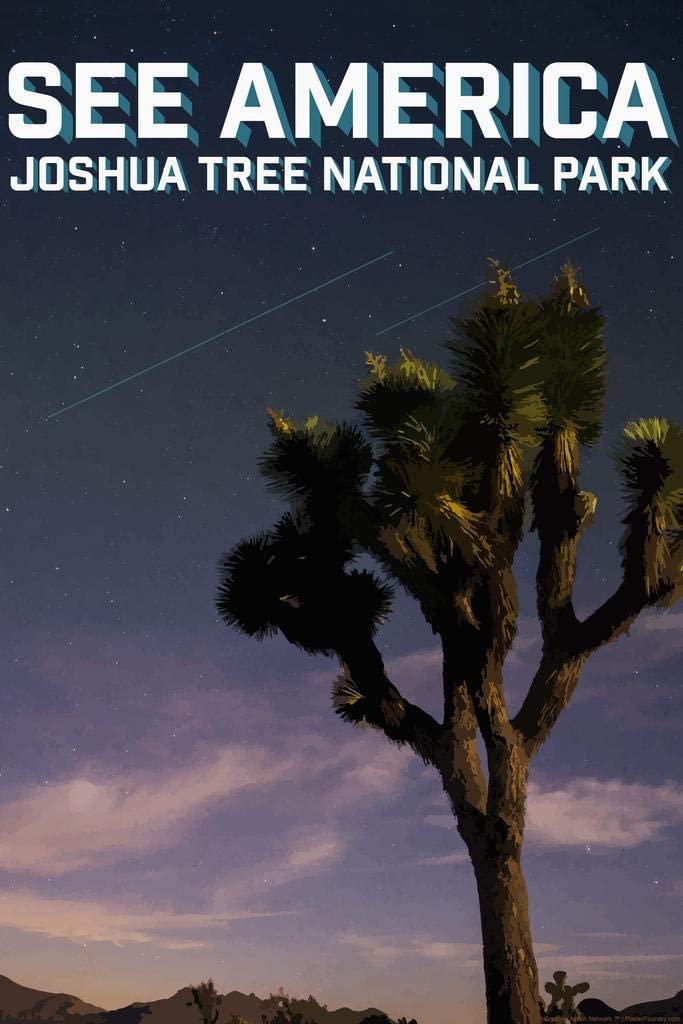 Joshua Tree National Park by Daniel Gross Creative Action Network See America National Parks Travel Retro Vintage Style Laminated Dry Erase Sign Poster 24x36