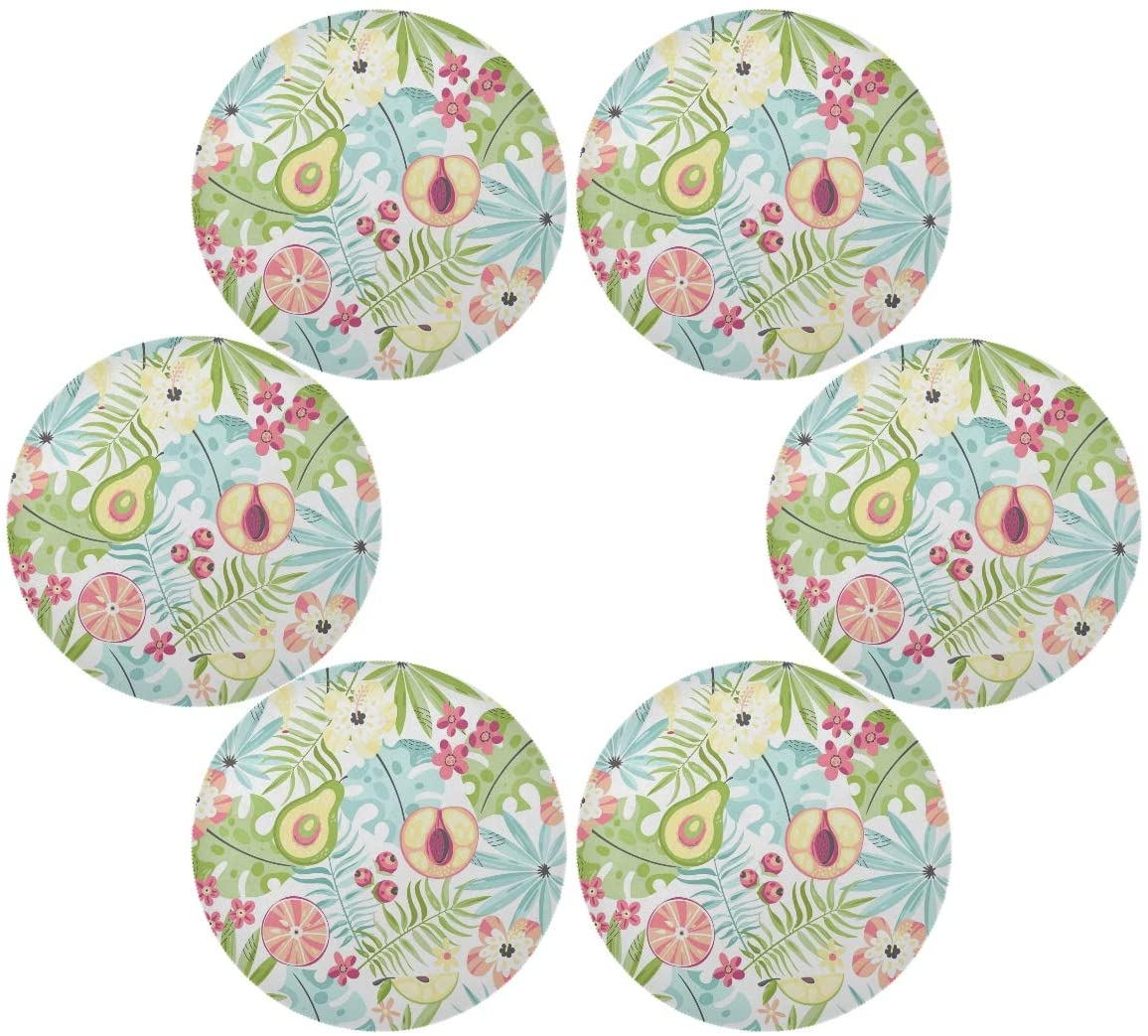 senya Fruit Collection Round Place mats for Kitchen Dining Table Runner Heat Insulation Non-Slip Washable Fall Placemats Set of 6