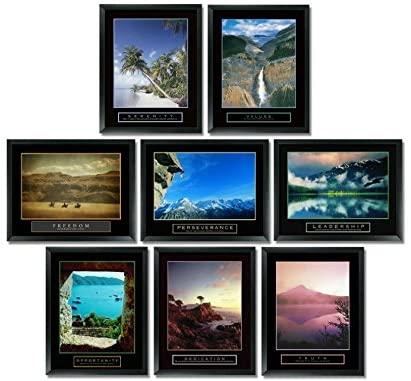 8 Framed Motivational Posters Bundle Inspirational Office Art Nature 22X28