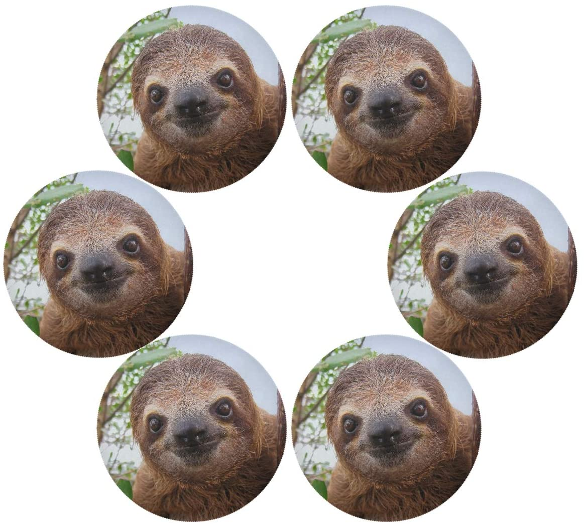 senya Baby Sloth Round Place mats for Kitchen Dining Table Runner Heat Insulation Non-Slip Washable Fall Placemats Set of 6