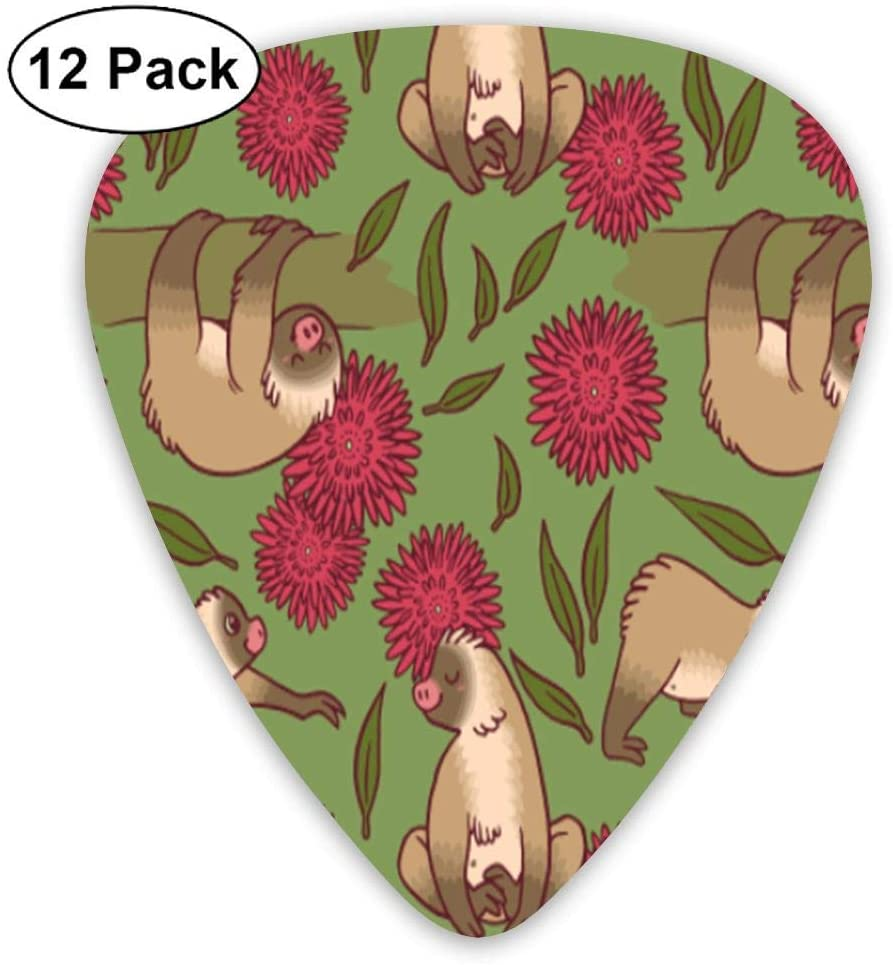 JINYOUR Flowers Sloth Unique Guitar Picks 12 Pack Plectrums for Musical Gift