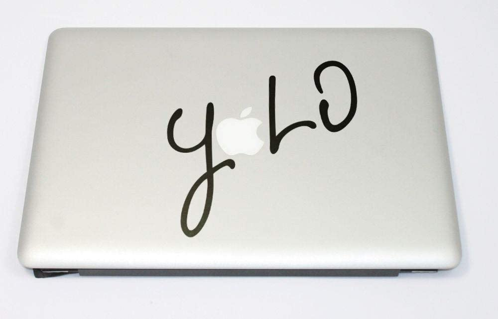 EricauBird YOLO - You Only Live Once, Carpe Diem, Drake, Catch The Day, esize The Day, Procrastinate, mac, MacBook Decal Sticker Easy to Apply and Removable