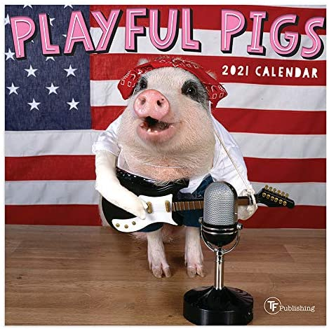 TF PUBLISHING 2021 Playful Pigs Mini Wall Calendar - Animal Photographs with Contacts and Notes Space - Home or Office Planning and Organization in Compact Spaces - Premium Gloss Paper 7