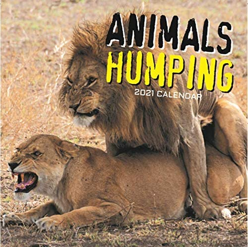 2021 Wall Calendar - Animals Humping, 12 x 12 Inch Monthly View, 16-Month, Includes 180 Reminder Stickers