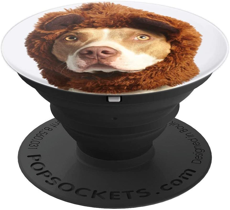 Pitbull Lion Costume Funny PopSockets Grip and Stand for Phones and Tablets