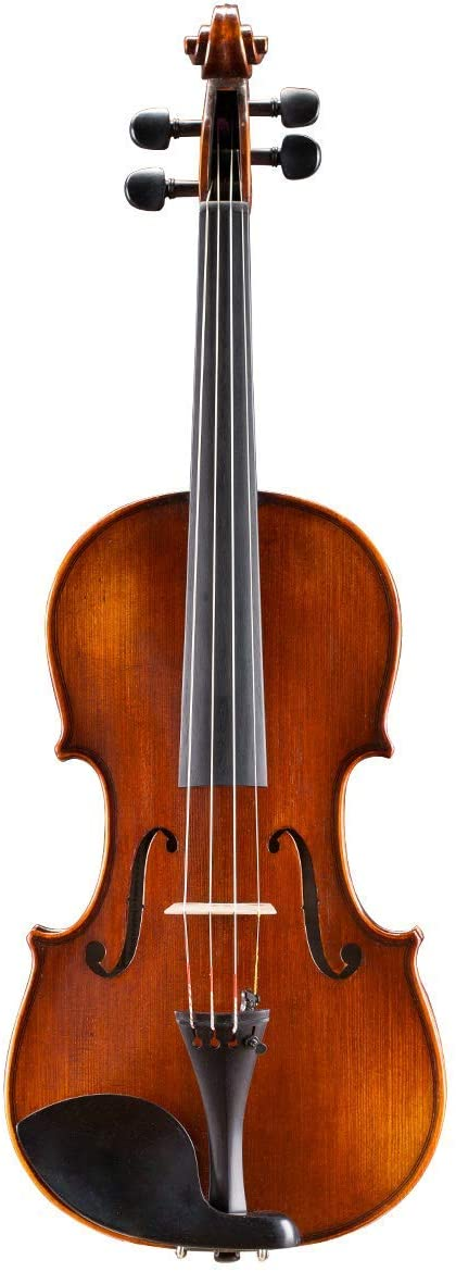Andreas Eastman VL305 Violin Outfit (1/2)