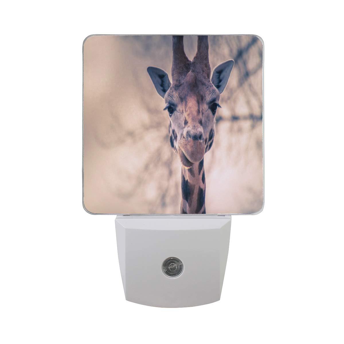 Linomo LED Night Light Lamp Cute Giraffe Face Auto Senor Nightlight Plug in for Kids Adults Boys Girls Bedroom Decor, 2 Pack