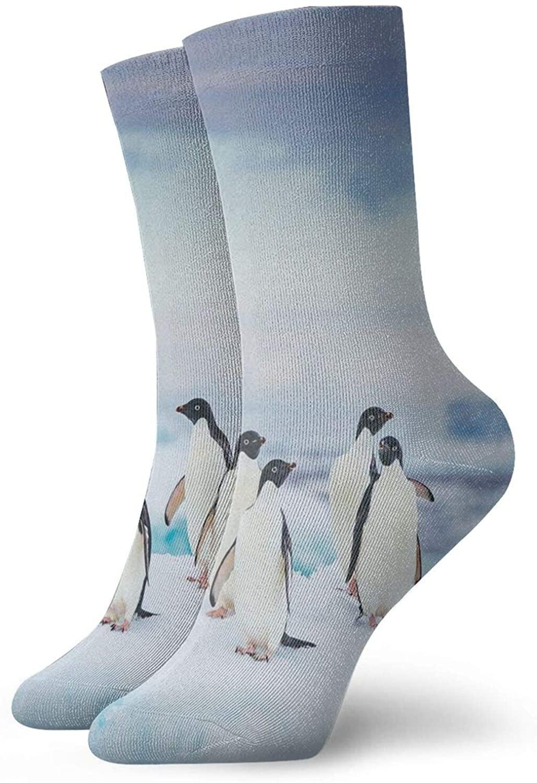 Penguin Men'S Women'S Lounge Work Short Boot Crew Socks Hiker Socks Crew Work Socks For Men And Women