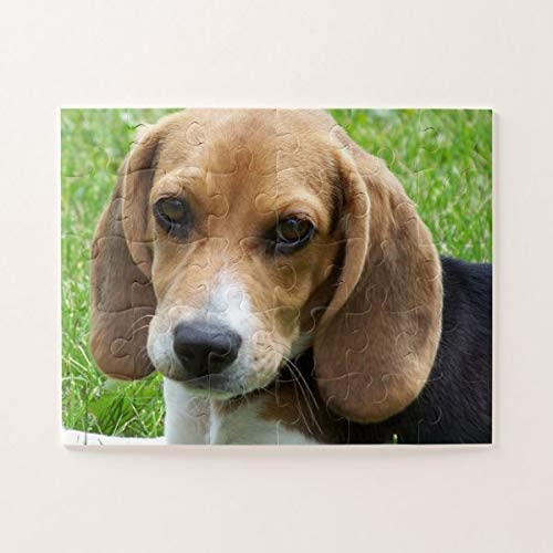 PotteLove Cute Beagle Puppy Jigsaw Puzzle 1000 Pieces for Adults, Entertainment DIY Toys for Creative Gift Home Decor