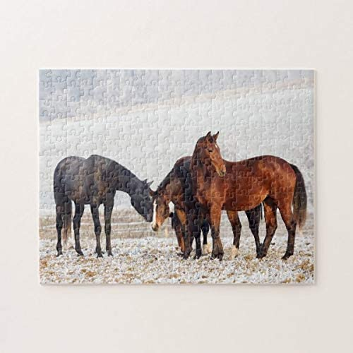 PotteLove Horses Jigsaw Puzzle 1000 Pieces for Adults, Entertainment DIY Toys for Creative Gift Home Decor
