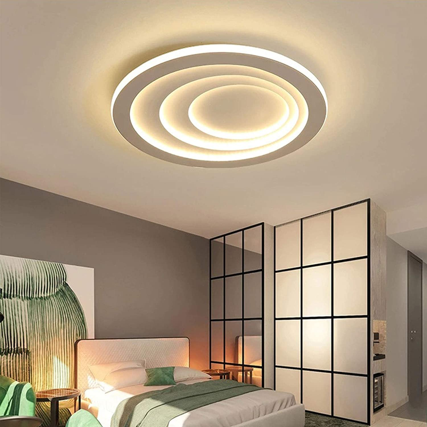 19.7'' Ceiling Lamp Acrylic Warm White Diameter 50cm-Stepless Dimming with Simple Ceiling Light for Dining Room Bedroom Livingroom