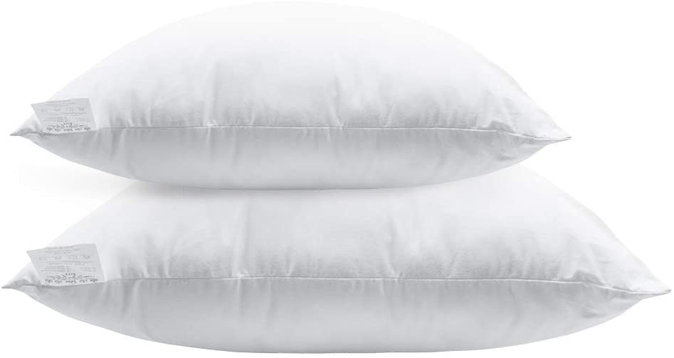 Pillow Throw Inserts Polyester Square Form Decorative Pillow, Cushion,Sham Stuffer - 2-Pack (20x20 in)