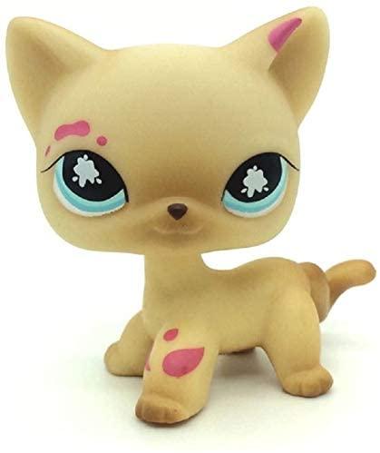 N/N Littlest Pet Shop, LPS Toy Messiest Cream Siamese Splash Cat Kitty Blue Eyes