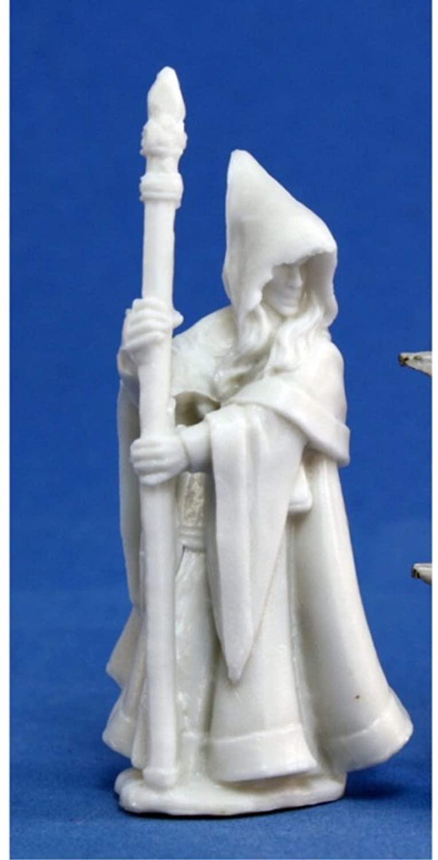 Reaper Anirion, Wood Elf Wizard (1) Miniature