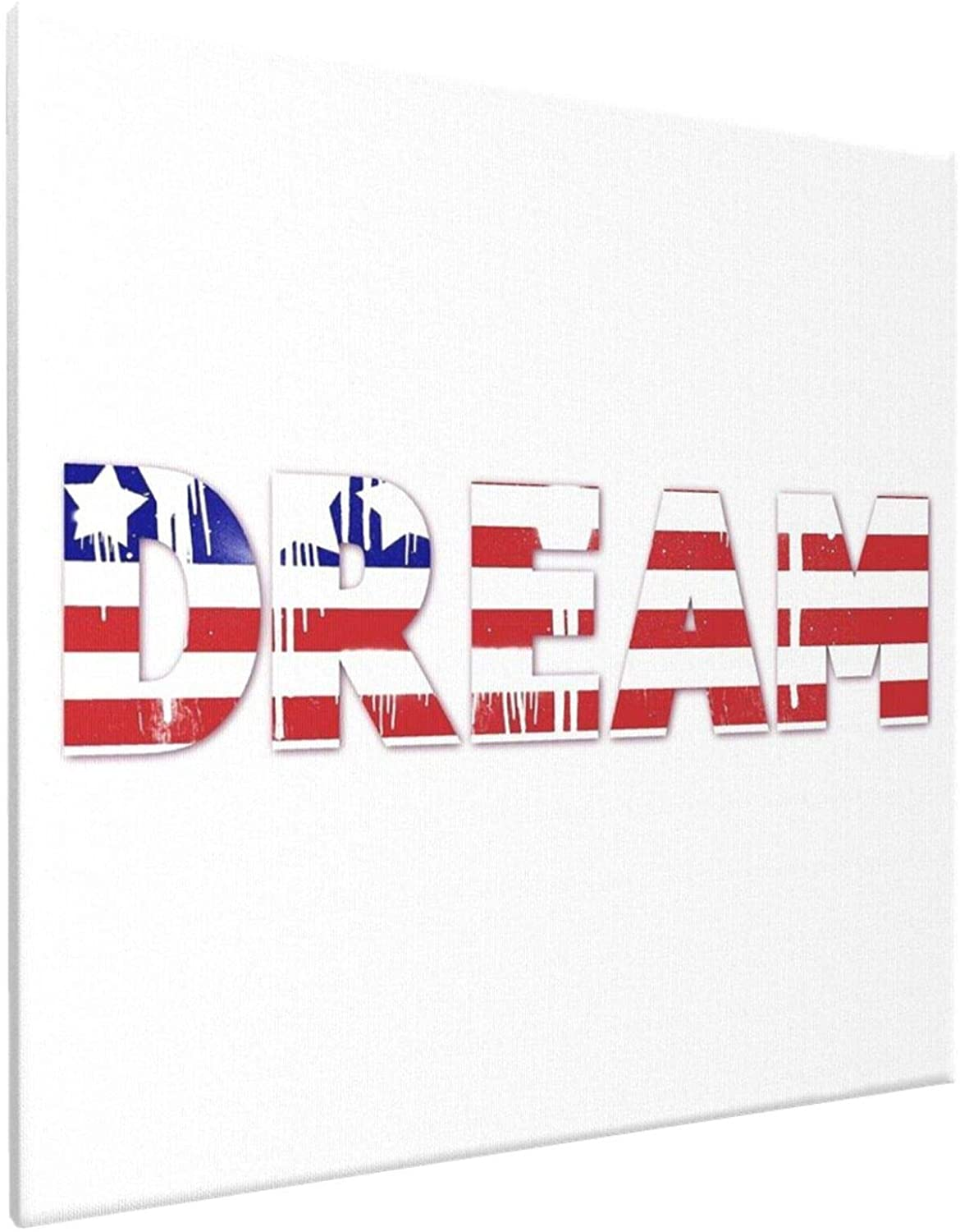 American Dream -£¨5£ Anime Living Room Bedroom Home Decoration Gift Fabric Wall Scroll Poster 16x16 Inch