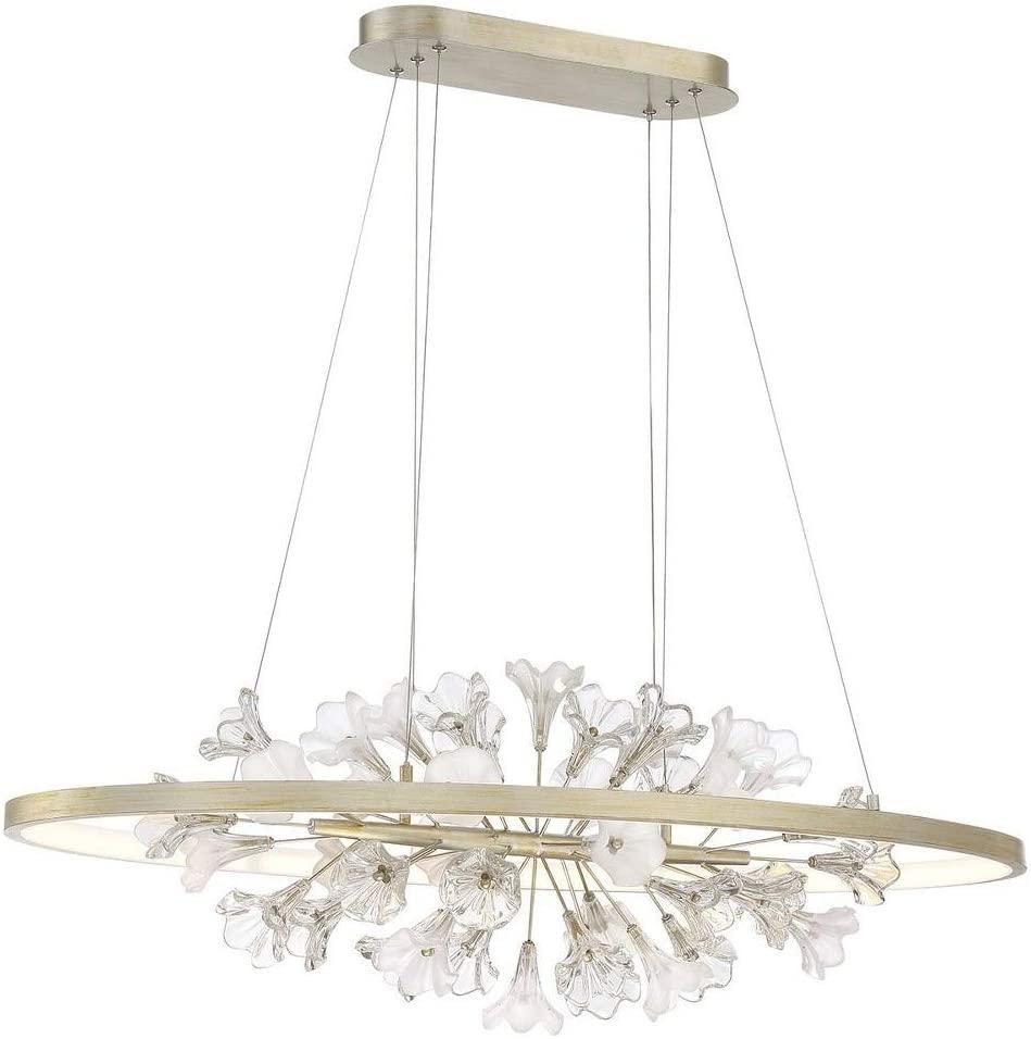 Eurofase 37344-016 Clayton Floating Flowers in the Ring Oval LED Pendant Light, 1-Light 40 Watt, 14