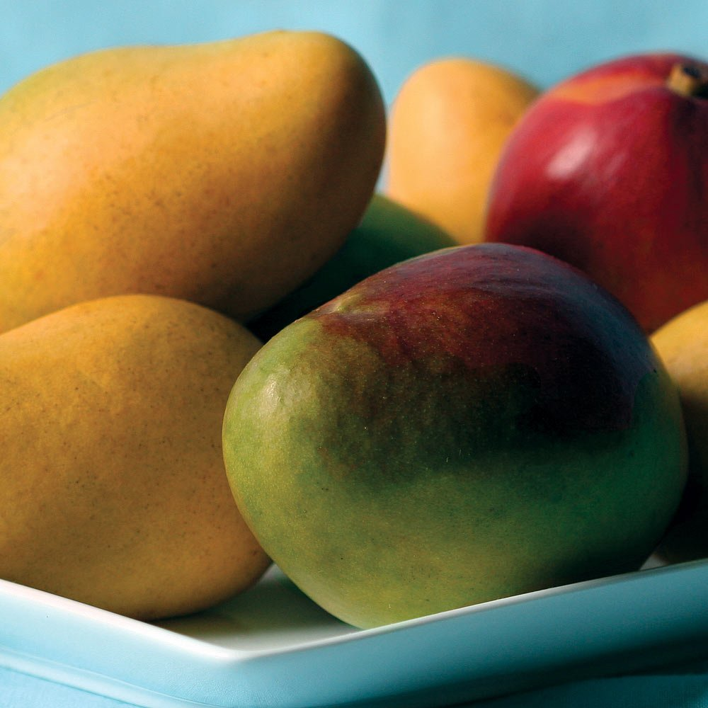 Mangos - 7 lbs - Mangos From the Fruit Company