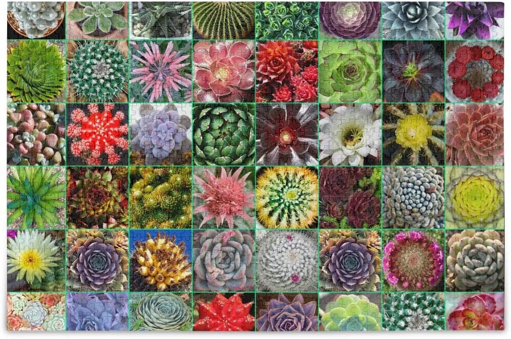 Puzzles for Adults 1000 Pieces Succulent Plants Desert Catcus Theme - Finished Size 30 inch x 20 inch Boredom Busters for Adults, Unique Puzzles for Family Fun Game