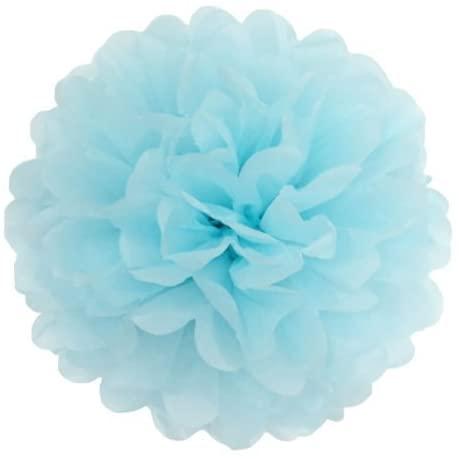 Sorive 5pcs Tissue Paper Pom-poms Flower Ball Wedding Party Outdoor Decoration Wedding / Baby Shower / Birthday Party / Nursery Decorations (8 Inch, Powder Blue)