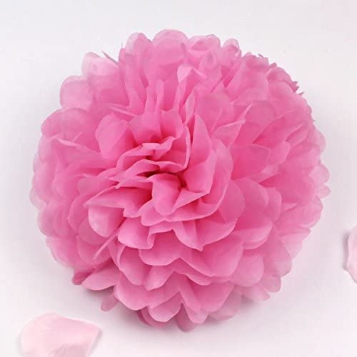 Sorive 10pcs Tissue Paper Pom-poms Flower Ball Wedding Party Pom Poms Craft Pom Poms Decoration Outdoor Decoration SORIVE0002 (Pink)