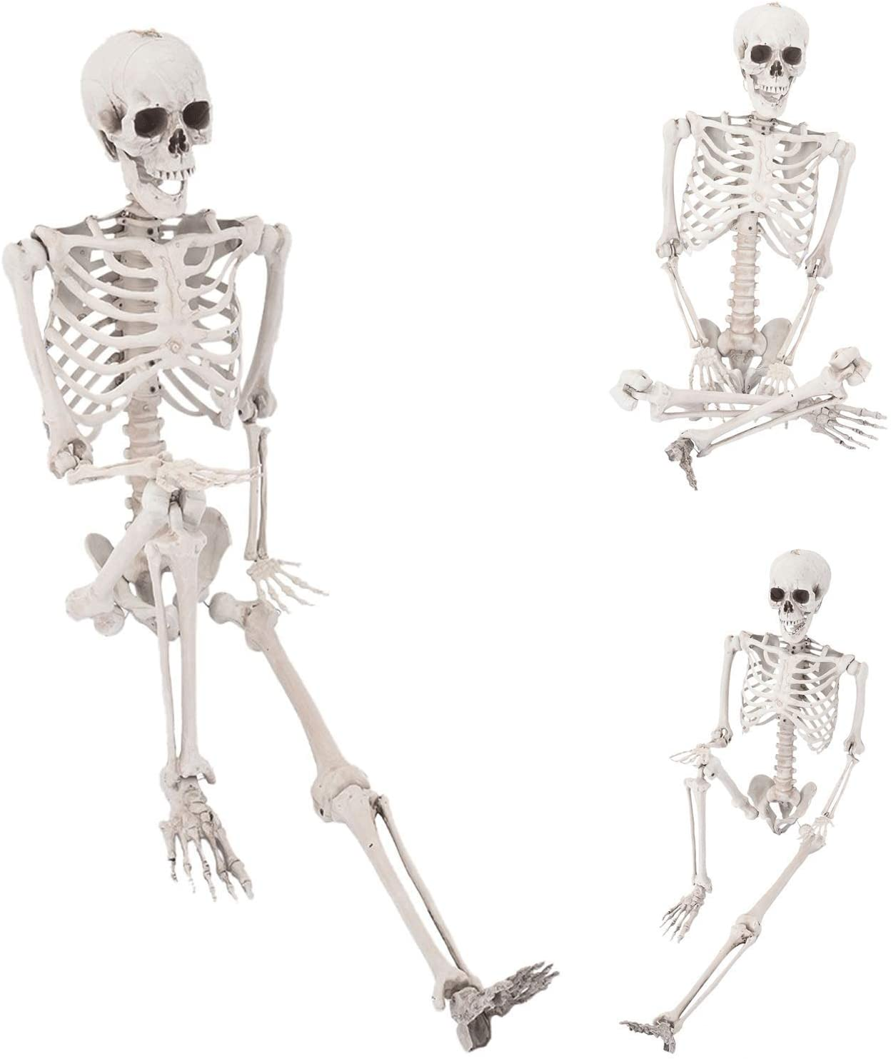 Shipment from USA 65 Inches Halloween Posable Skeleton, Full Body Skeleton Movable Joints, Bones for Halloween Decorations Great for Haunted Houses, Graveyard Scenes, Halloween Parties