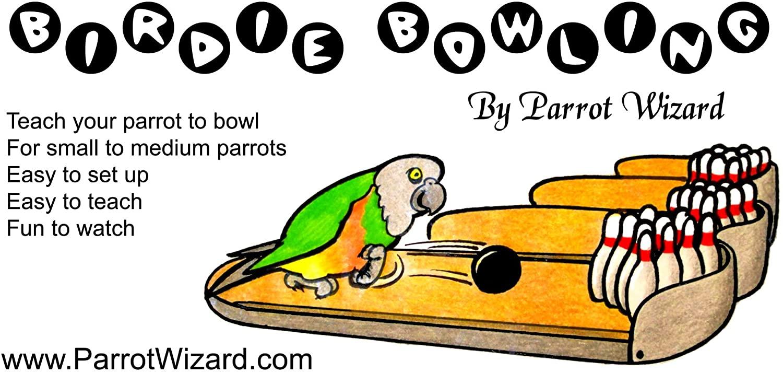 Parrot Wizard Birdie Bowling Trick Training Prop