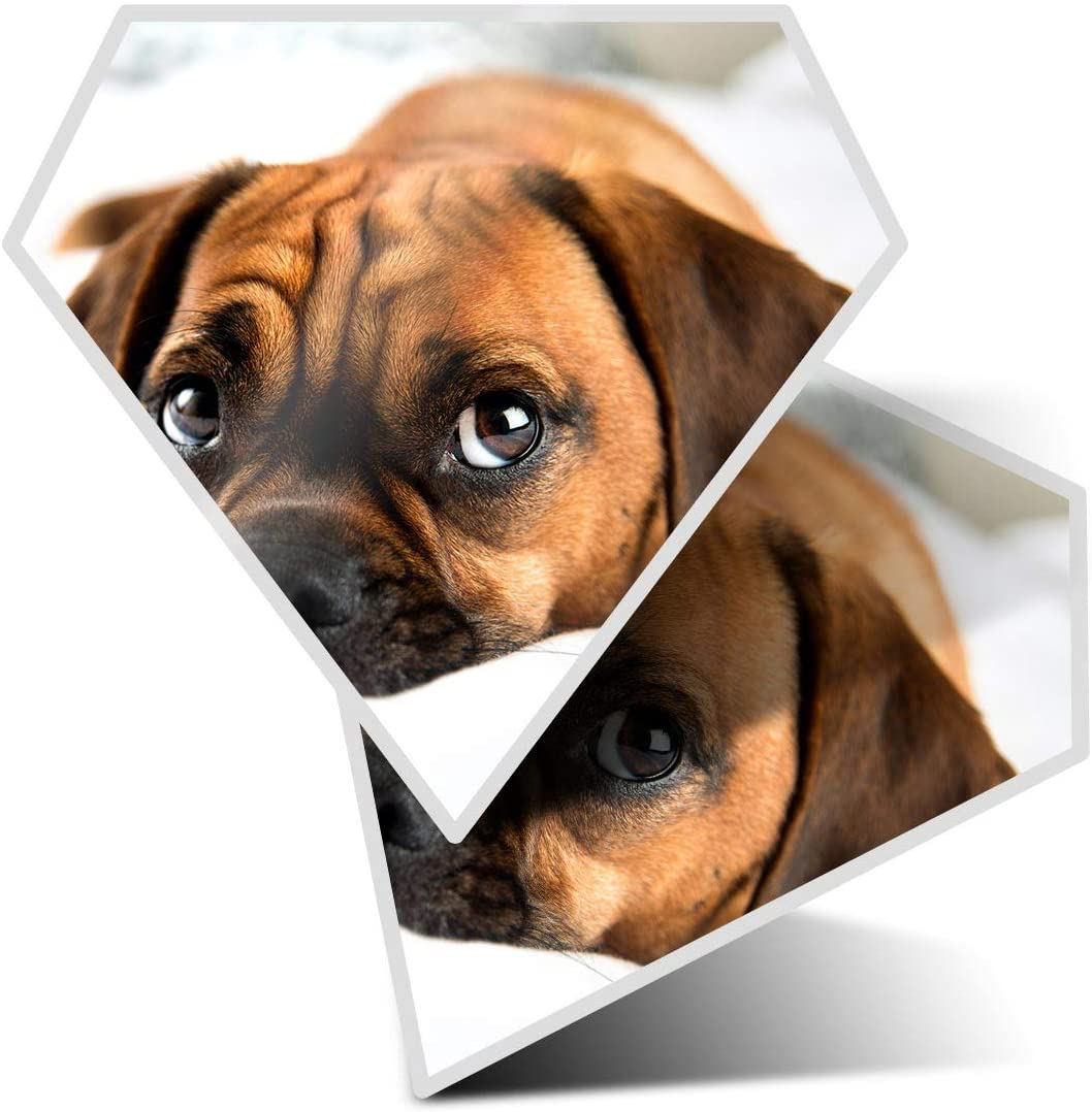 Awesome 2 x Diamond Stickers 7.5 cm - Puggle Beagle Pug Dog Puppy Fun Decals for Laptops,Tablets,Luggage,Scrap Booking,Fridges,Cool Gift #16240
