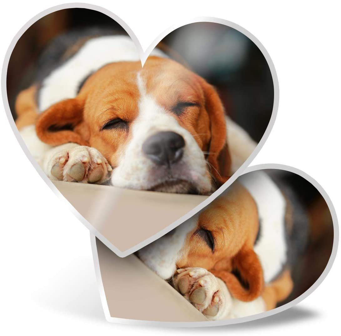 Awesome 2 x Heart Stickers 7.5 cm - Sleeping Beagle Dog Puppy Cute Fun Decals for Laptops,Tablets,Luggage,Scrap Booking,Fridges,Cool Gift #15506