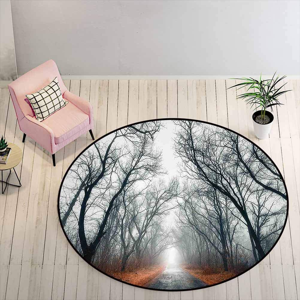 Round Outdoor Rug 4 ft Round - Mystic House Decor Easy to Clean Rug Road Towards The Light Cloudy Autumn Sky Trees Golden Leaves on The Ground, Gray Red