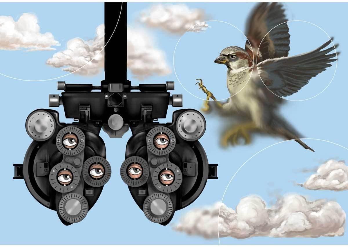 Art for Eye Doctors Birds Eye View Canvas Wall Art