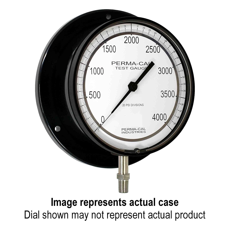 Pressure Gauge, Gearless, Test, 0-2000 psi, 6
