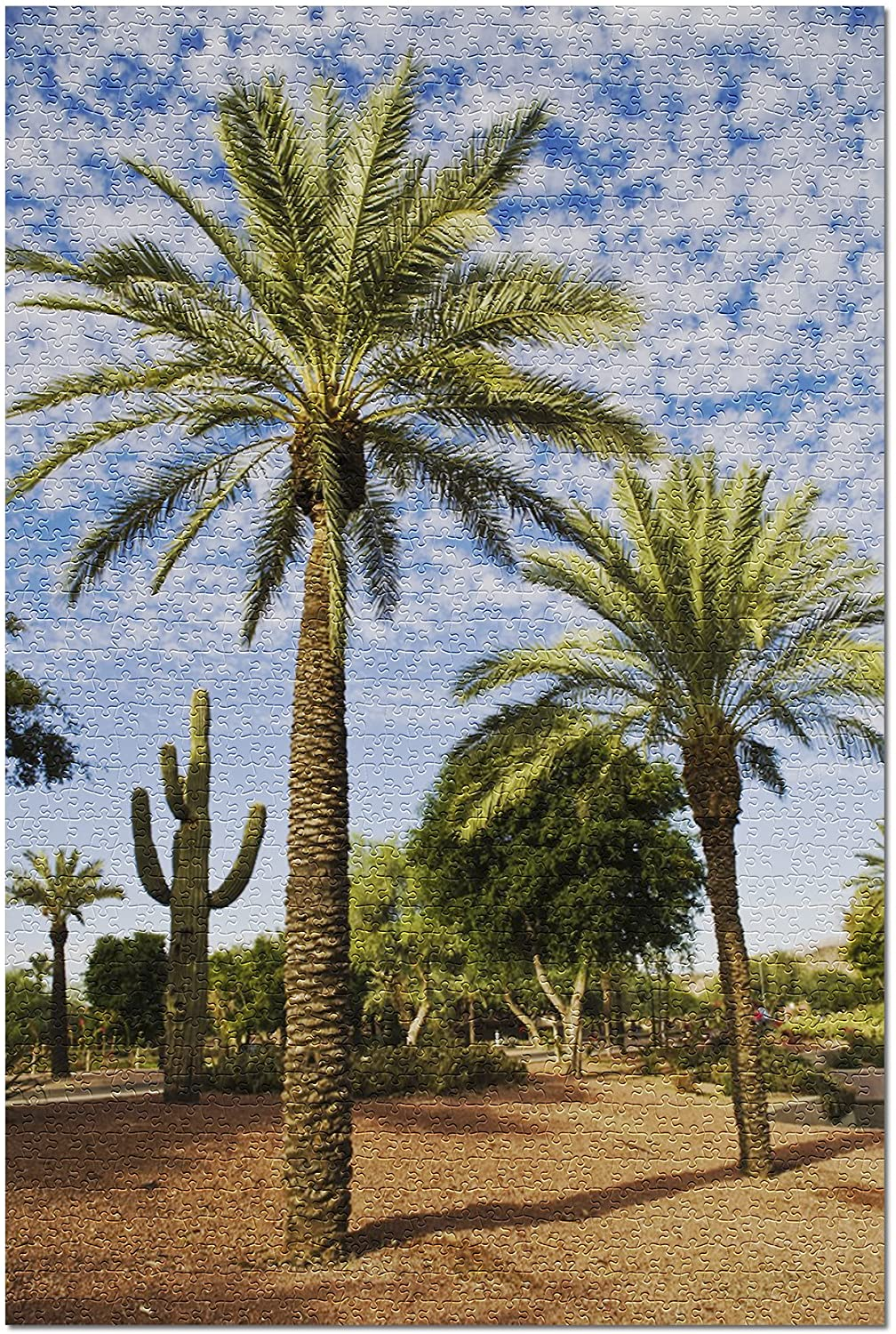 Palm Trees and Cactus (Premium 1000 Piece Jigsaw Puzzle for Adults, 19x27)