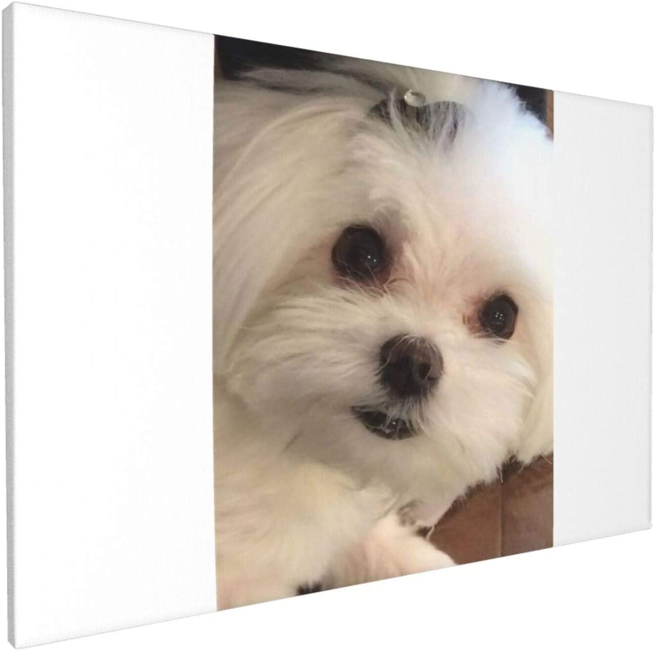 Canvas Wall Art with Bichon Frise Painting Print, 12 x 18 Pictures Paintings Artwork Framed for Living Room Home Decoration