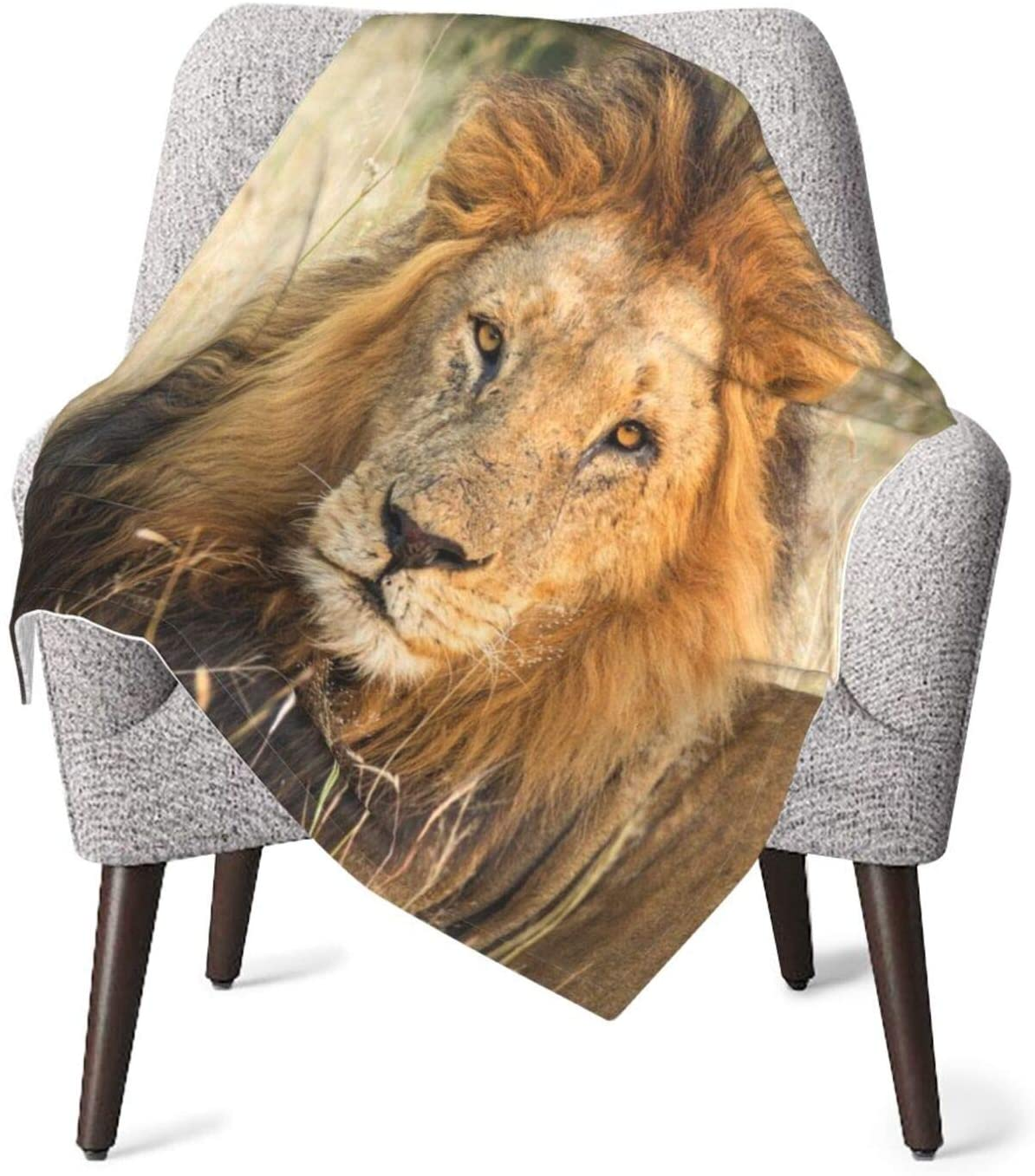 N\ A Male Lion Relaxing in Grass with Eye Contact Baby Blanket Unisex Wrap Soft Blankets Neutral Receiving Blanket for Boys and Girls 40 x 30 inches