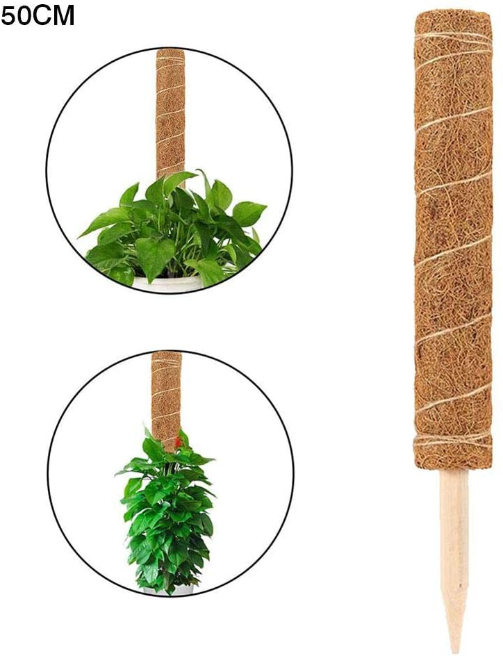 N/Y Coir Totem Pole, Coir Moss Totem Pole Coir Moss Stick Environmental Protection Plant Climbing Coir Palm Stick for Plant Support Extension, Climbing Indoor Plants, Creepers