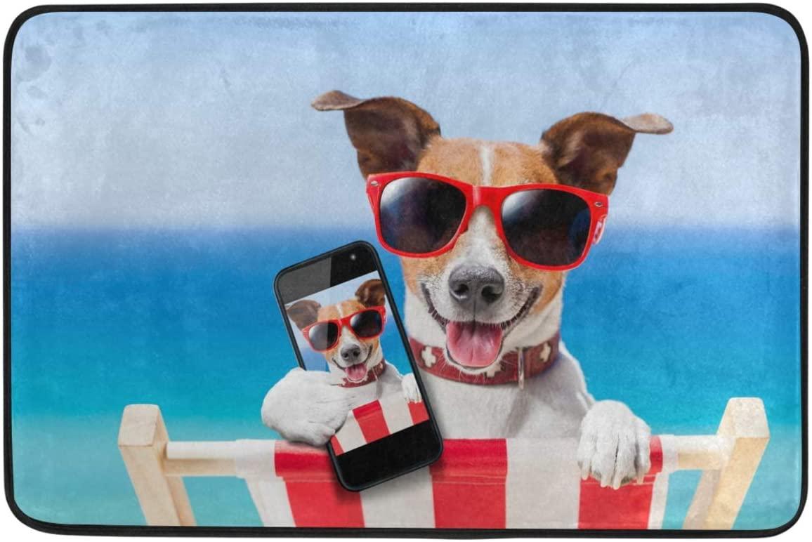 Wamika Funny Dog Decorative Doormat Non Slip Washable Funny Dog Animals Selfie Summer Holidays Welcome Indoor Outdoor Entrance Bathroom Floor Mats Pets Cat Dog Mat Home Decor, 23.6 x 15.7 inch