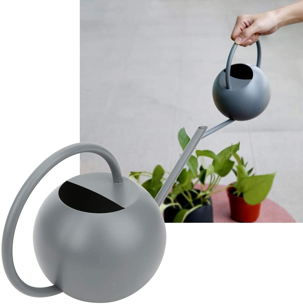 Boquite Mini Plant Watering Can Indoor, 1L Gray High Capacity Watering Can Stainless Steel Watering Pot for Outdoor Garden Plants Houseplant