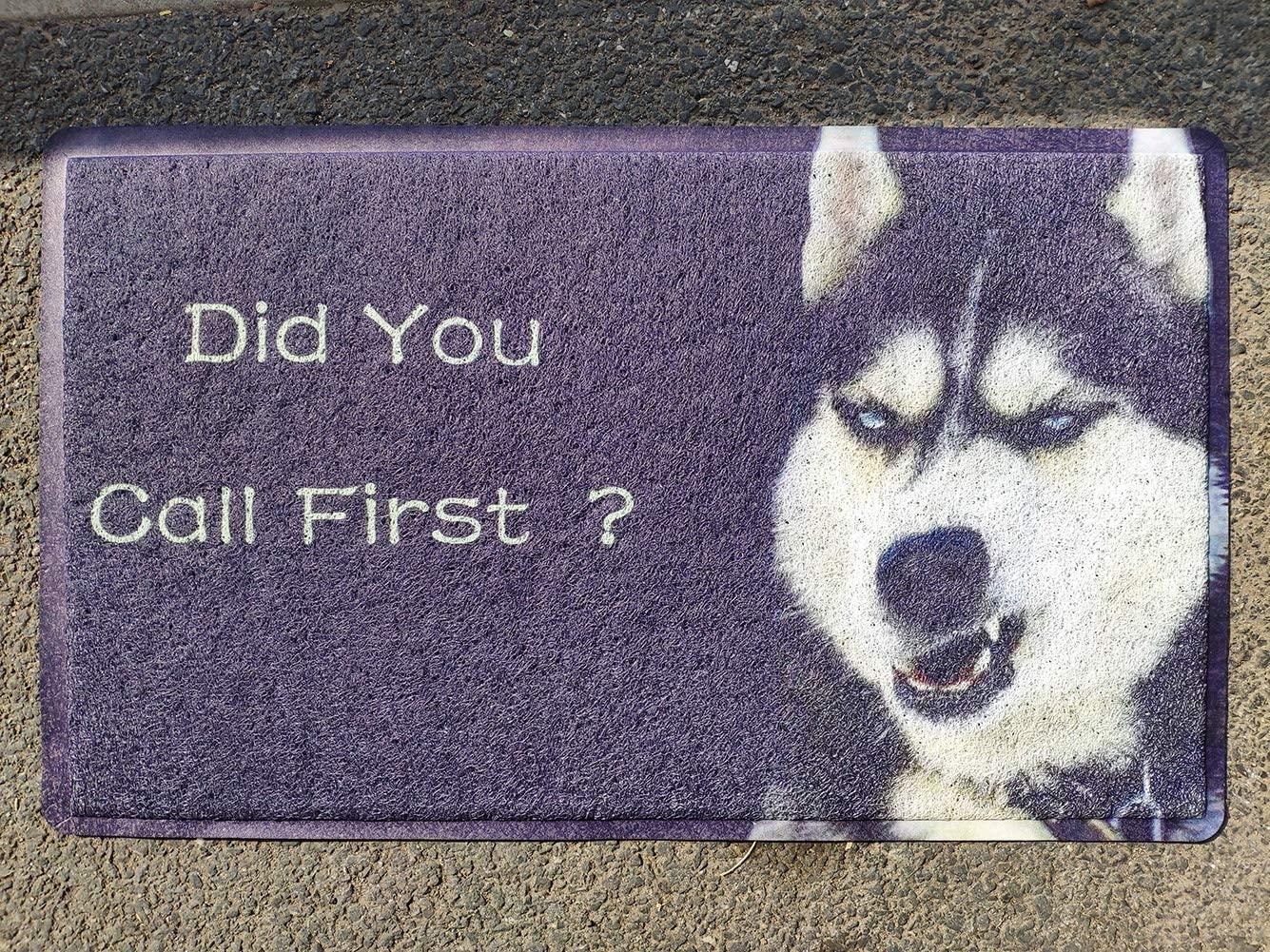 LK-LX Door Mat Floor Mat Did You Call First Funny Dog 18