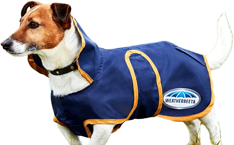Weatherbeeta Windbreaker 420D Deluxe Lite Dog Coat, Navy/Gold, 24