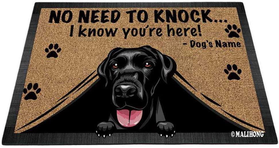 MALIHONG Personalized Doormat Peeking Dog Labrador No Need to Knock I Konw You're Here 27.5 x 17.7 Inch