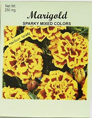 Set of 100 Flower Seed Packets! Flower Seeds in Bulk (100, Marigold Sparky Mix)