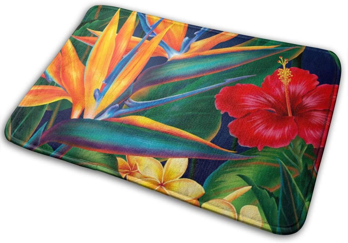 Fashion Durable Indoor Doormat Kitchen Rugs Or Mats Entrance Rug for Front Door (16 Inches X 24 Inches) - Floral Bird Tropical Paradise Hawaii