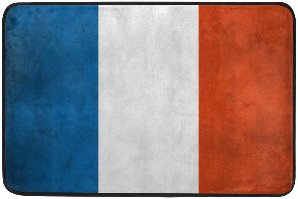 Funny Doormat French Flag Door Mat- Welcome Entrance Rug Shoe Scraper for Indoor Outdoor Home, HCMusic 23.6x15.7 Rubber Back