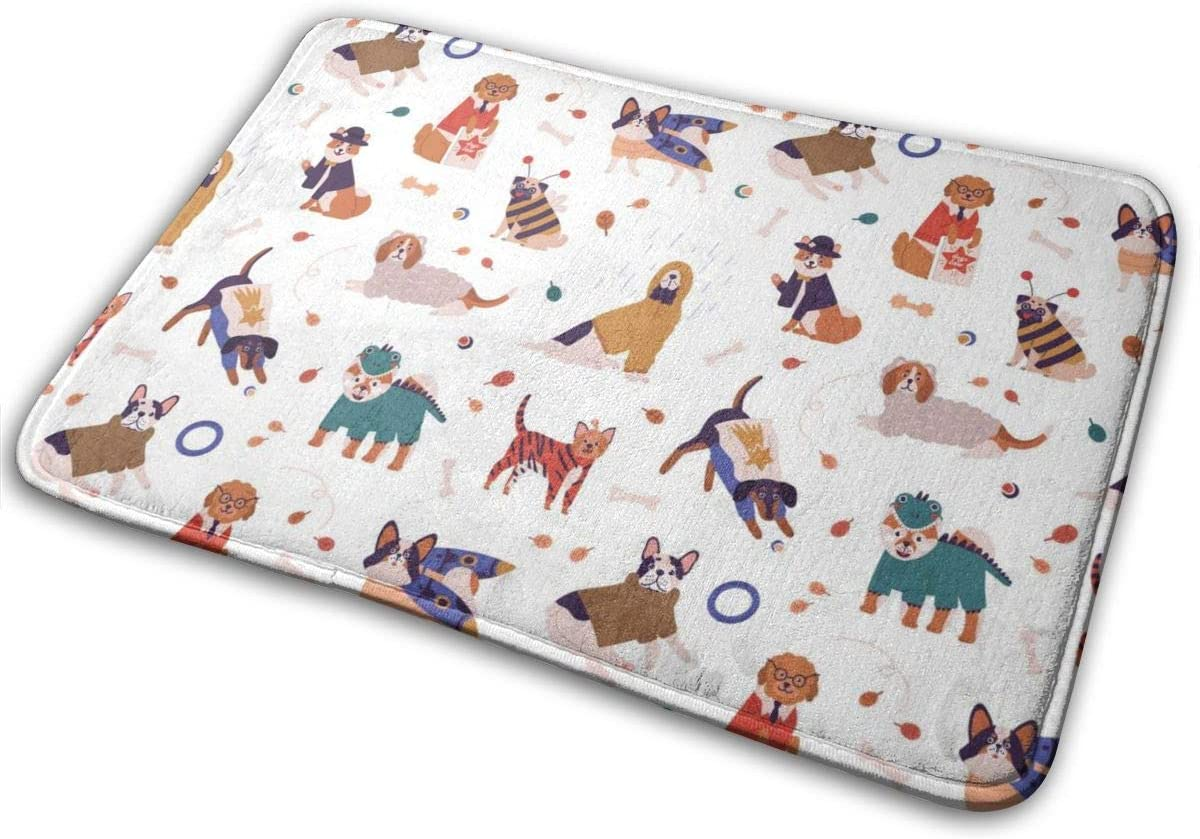 QSMX Colorful Joyful Dog Wearing Funny Area Rug Contemporary Doormat for Kitchen,Floorcover Soft Mat for Bedroom Living Room,Absorbent Water Front Back Door Mat Floor Mats,Washable